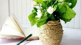 Как сделать вазу родными руками