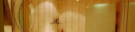 О стеновых пластиковых панелях и их особенностях